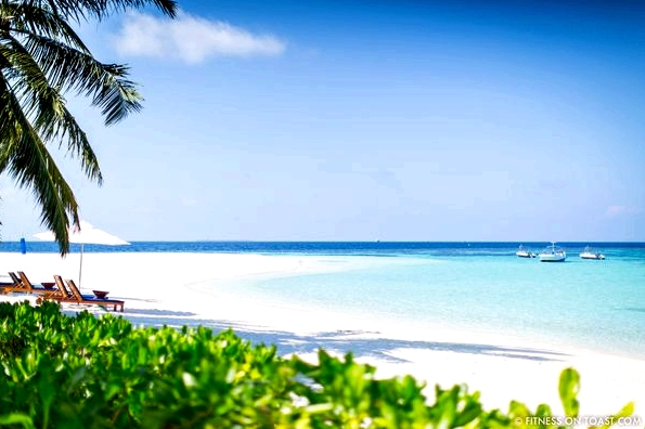 Fitness On Toast Faya Blog Girl Healthy Workout Exercise Training Health Travel Luxury W Maldives Starwood Vacation Active Escape Ideas Review-24
