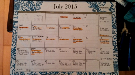Here's my training schedule for July.  I know, it's so high-tech and very fancy, but it works for me.  The workouts I actually complete are all logged in Google Connect.' /2015/07/20150721_075106.jpg?w=470&h=264 470w, /2015/07/20150721_075106.jpg?w=940&h=528 940w, /2015/07/20150721_075106.jpg?w=150&h=84 150w, /2015/07/20150721_075106.jpg?w=300&h=169 300w, /2015/07/20150721_075106.jpg?w=768&h=432 768w